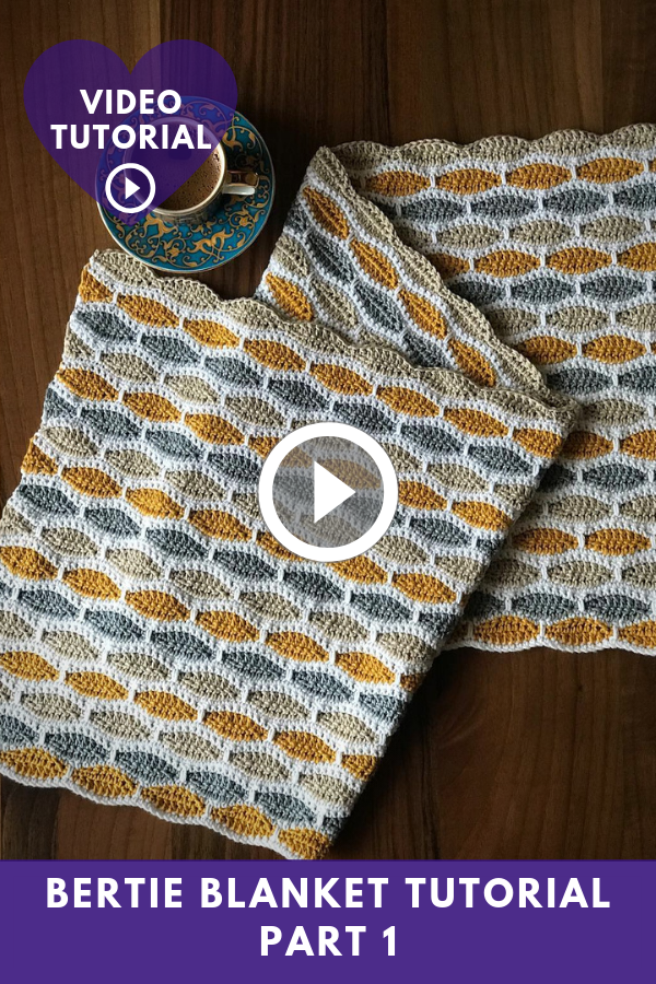 Bertie Blanket Video Tutorial Part 1