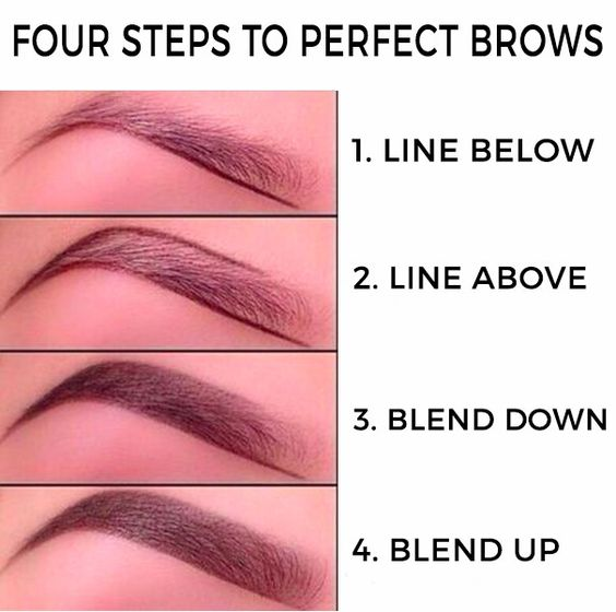 Step Step Brows