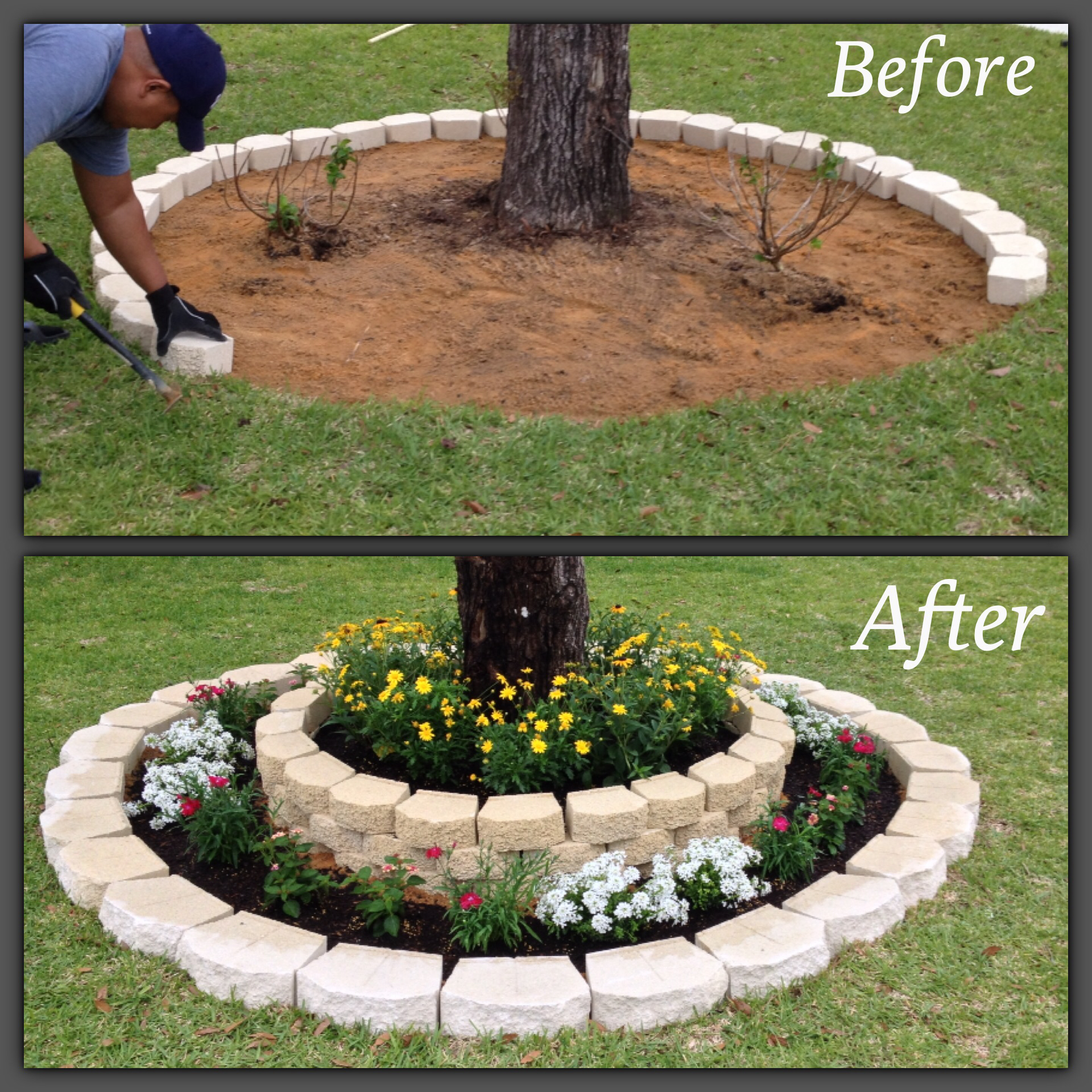 Front Yard Tree Landscaping Idea
