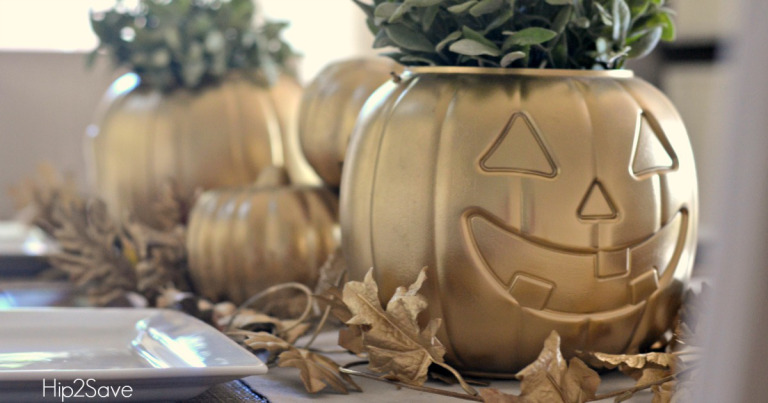 Are you excited for Fall decorating?