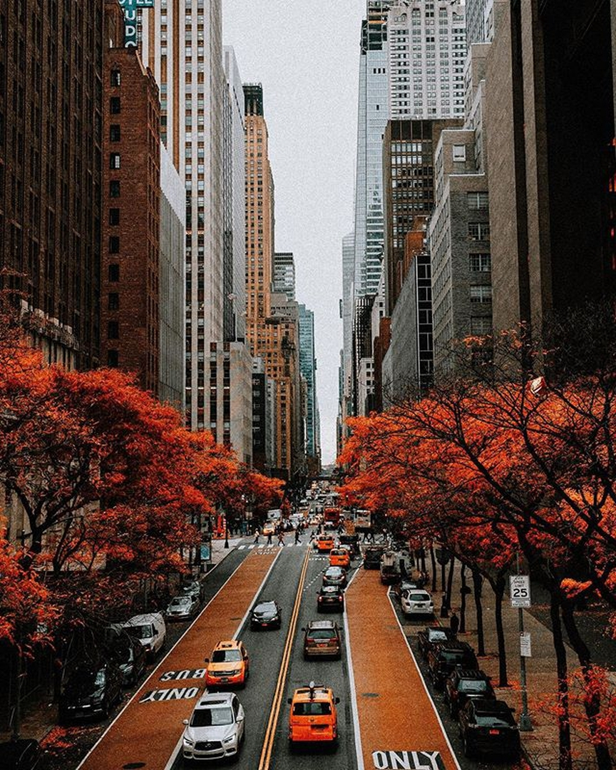 ✨Have A Nice Day, Friends!✨ 📷Photo By Newyork - Architecture