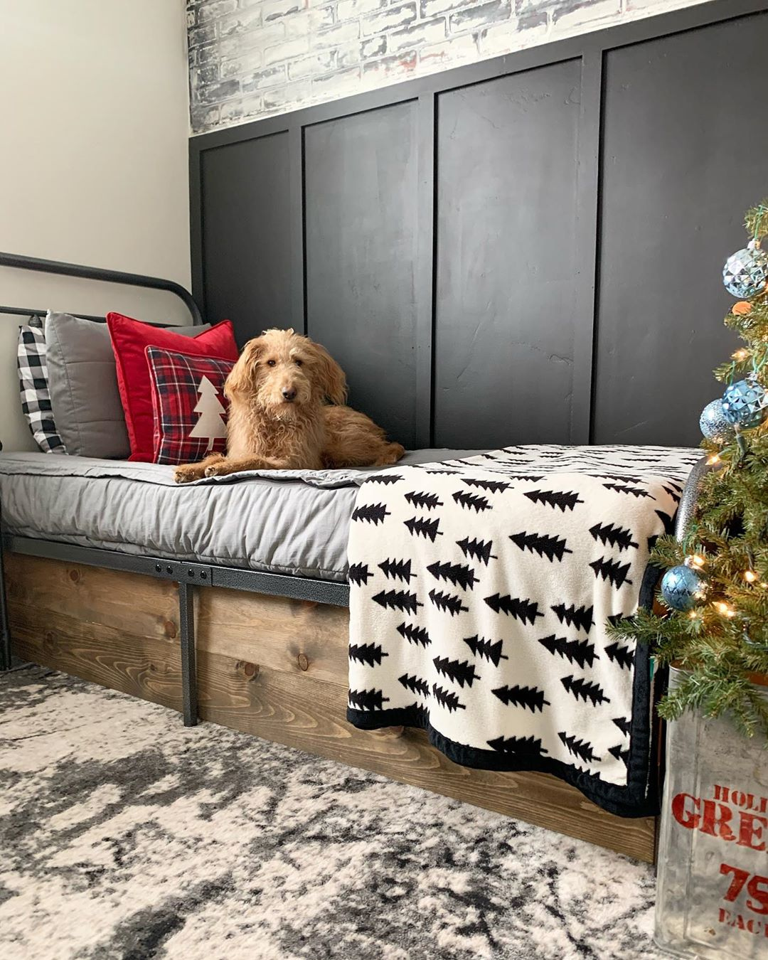 """Ginger Says, """"Hello!"""" And Wants To You T Modernfarmhousechristmas - Diy Home Decor"""