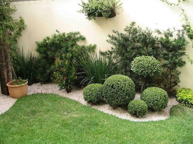 Decoração E Bordadura Teujardim Paisag Paisagismobrasil - Gardening