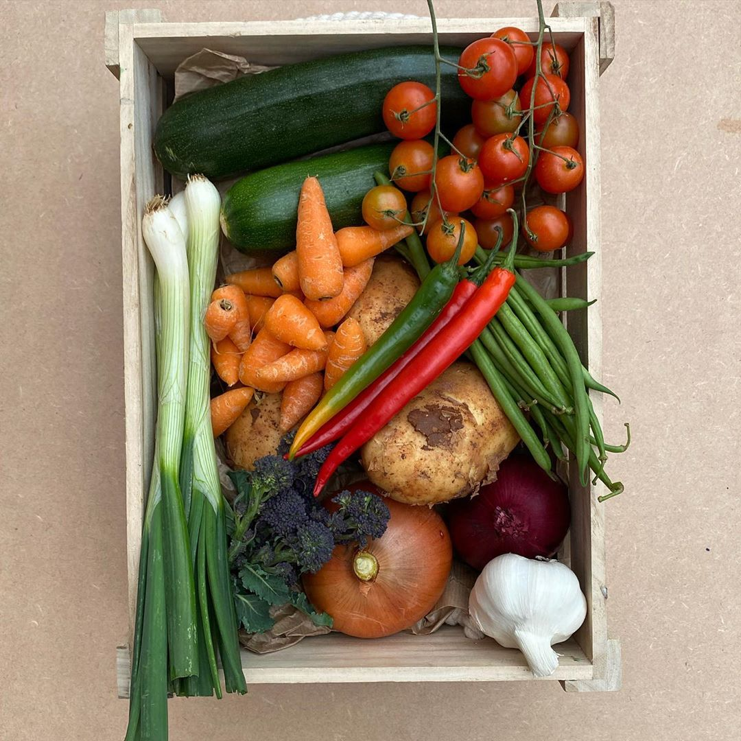 Available From 28Th May! Limited Availab Allotmentuk - Gardening