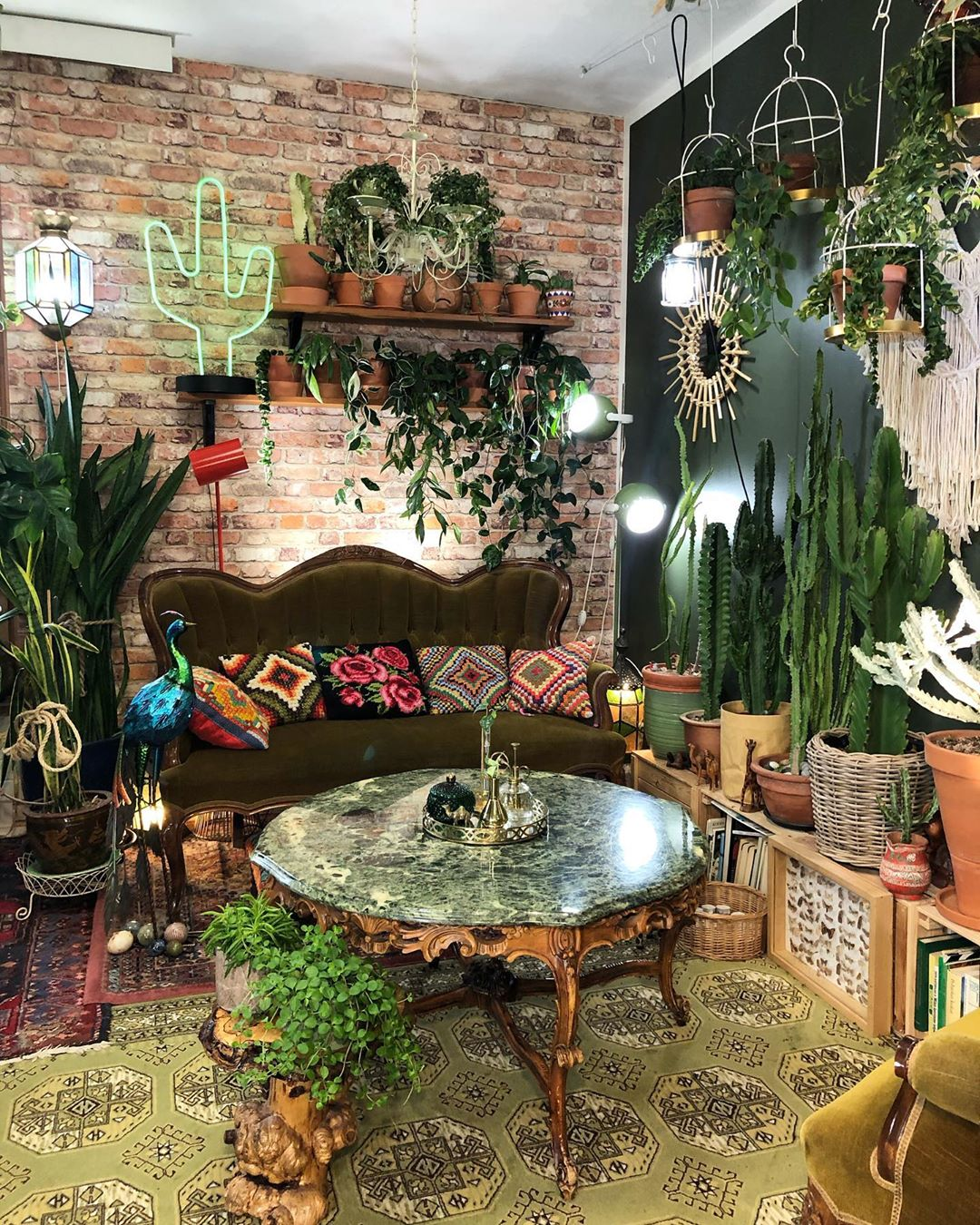 Green Sunday 🌿🌵 Have A Great Day 💚💚💚 Home - Living Room
