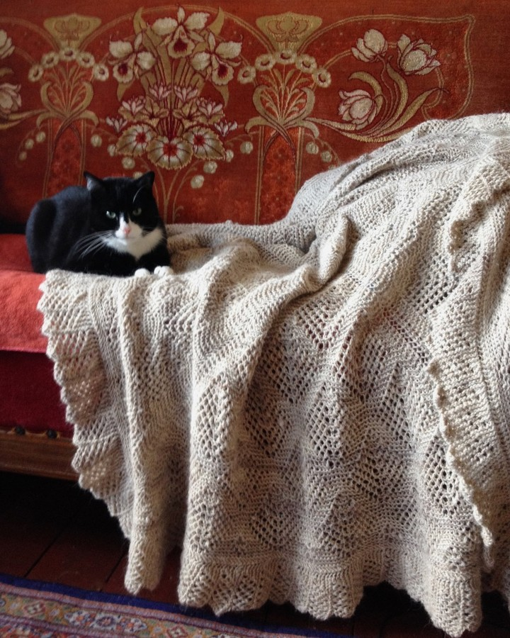 Meet Mr Norrell, The Quality Control Man Baby - Shawl Knitting