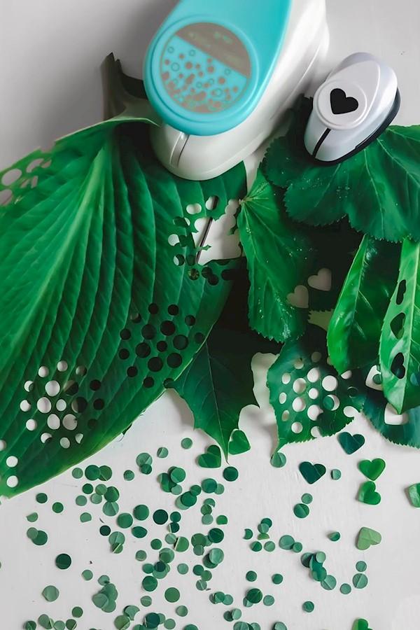 KONFETTI TILL BRÖLLOPET 🎉 Vad tror ni om att göra eget konfetti av blad istället för att gästerna ska kasta ut massa dumt ris ell